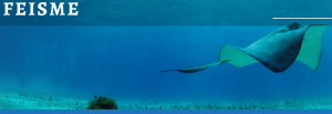 Fête Européenne de l\'Image Sous-Marine et de l\'Environnement